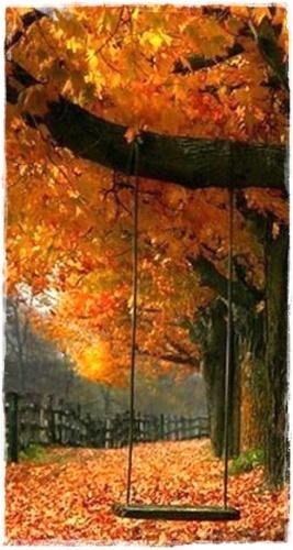 fall 15